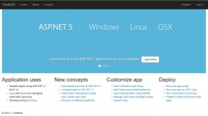 Template project running on Windows Azure Pack